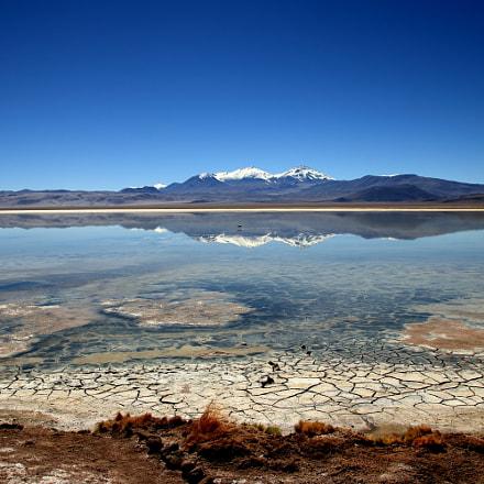 Laguna Santa Rosa, Atacama, Canon EOS 80D, Canon EF-S 17-55mm f/2.8 IS USM