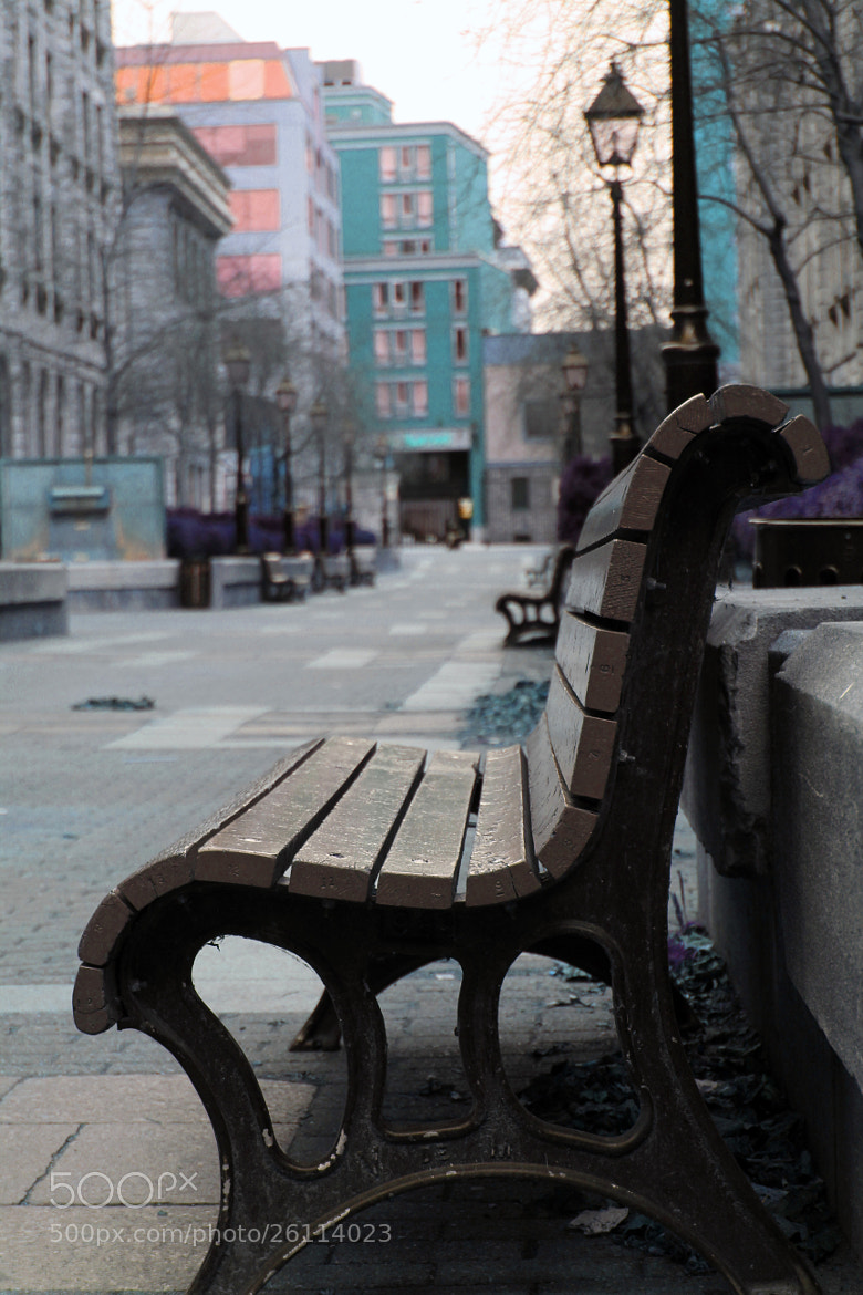 Photograph Lonely Bench by Sarah Zoubeidi on 500px