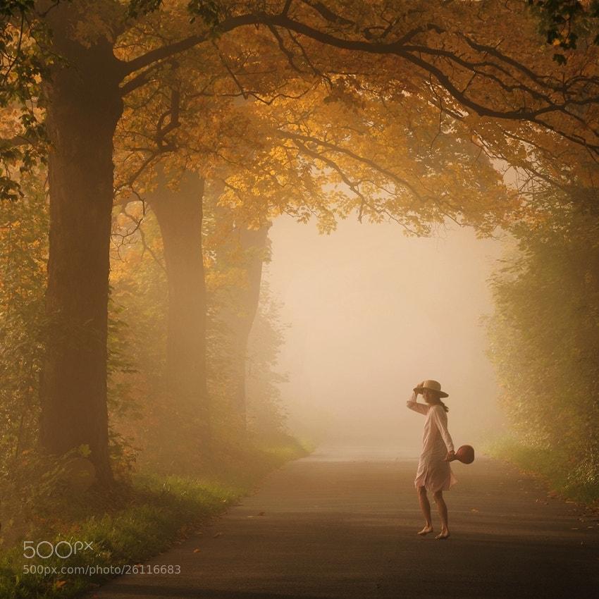 Photograph autumn dionysia by Sebastian Luczywo on 500px