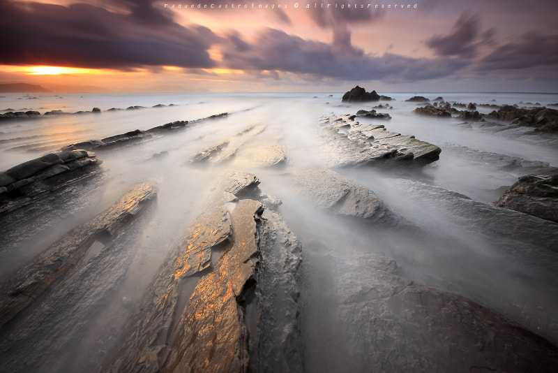 Photograph GOLDEN RUSH II by Raquel de Castro on 500px