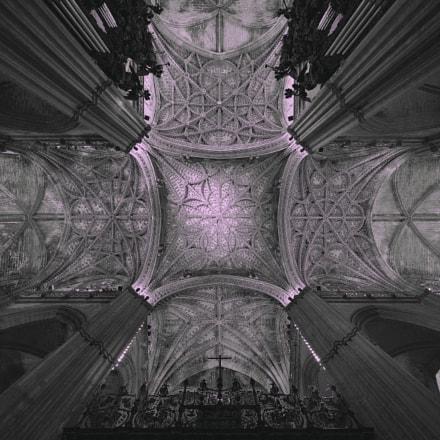 Cathedral de Seville, Nikon D810, AF-S Zoom-Nikkor 14-24mm f/2.8G ED