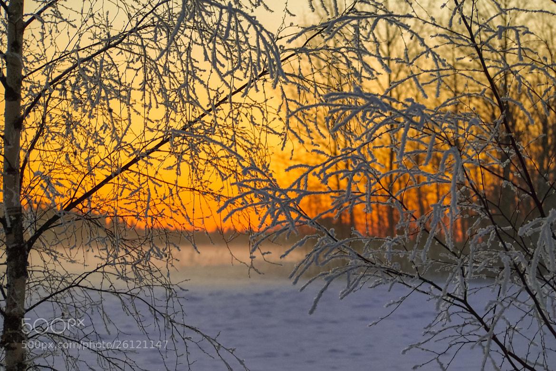 Photograph Sunset by Ville Ruusunen on 500px