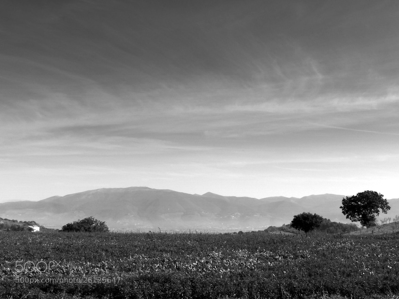 Photograph Calma dei sensi! by Ulderico Pontini on 500px