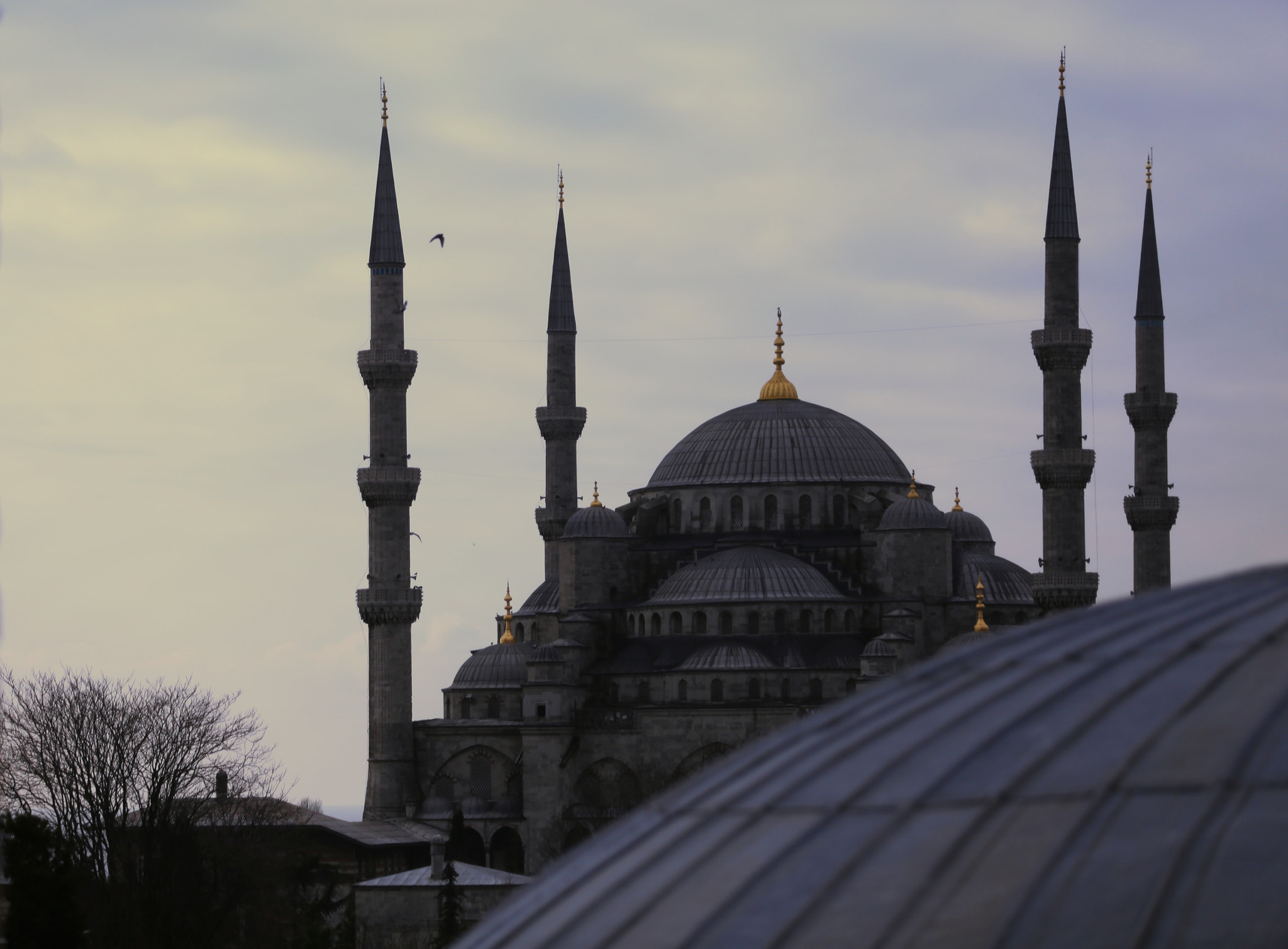 Photograph The Blue Mosque by Miles Skorpen on 500px