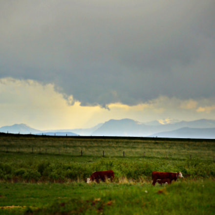 View to the Mountains, Nikon D3100, Sigma 18-200mm F3.5-6.3 DC OS HSM