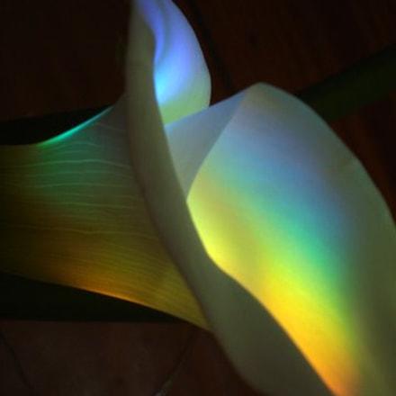 gilded lily, Sony DSC-W70