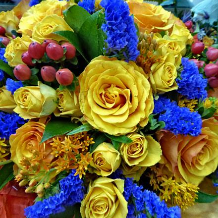 Bouquet of beautiful roses, Panasonic DMC-TZ60