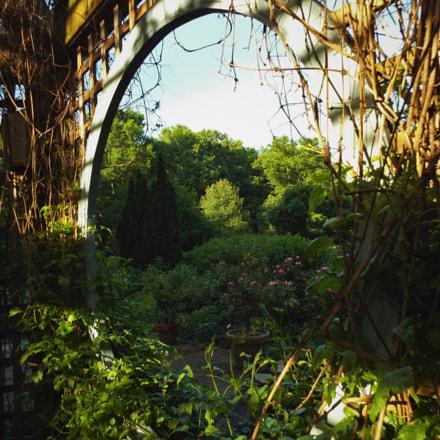 Window to the Gardens, Fujifilm FinePix S8300