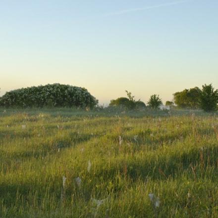 morning, Nikon D90, AF Nikkor 35mm f/2D