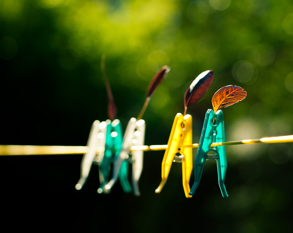 Photograph Out to dry by Alex Chu on 500px