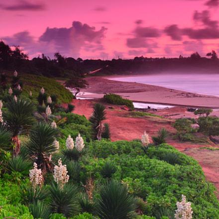 Tropical Dream, Nikon D800E, AF-S Zoom-Nikkor 24-70mm f/2.8G ED