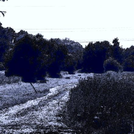 Cyanography004, Nikon COOLPIX P530