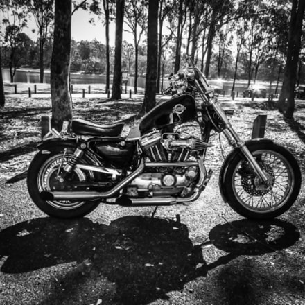 Harley, Canon POWERSHOT SX30 IS