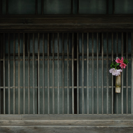 omotenashi, Nikon D700, AF DC-Nikkor 135mm f/2D