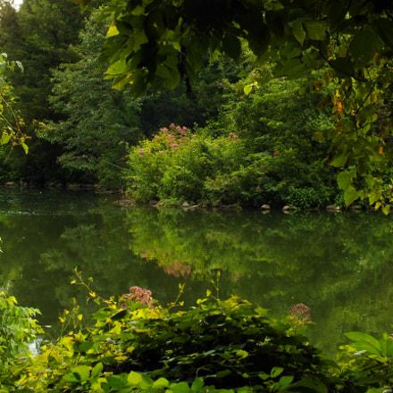 Beauty in Nature, Fujifilm FinePix HS35EXR