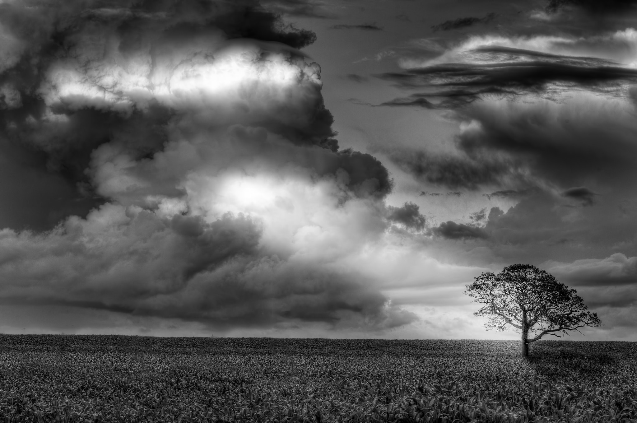 Photograph Clouds by Mark Tizard on 500px