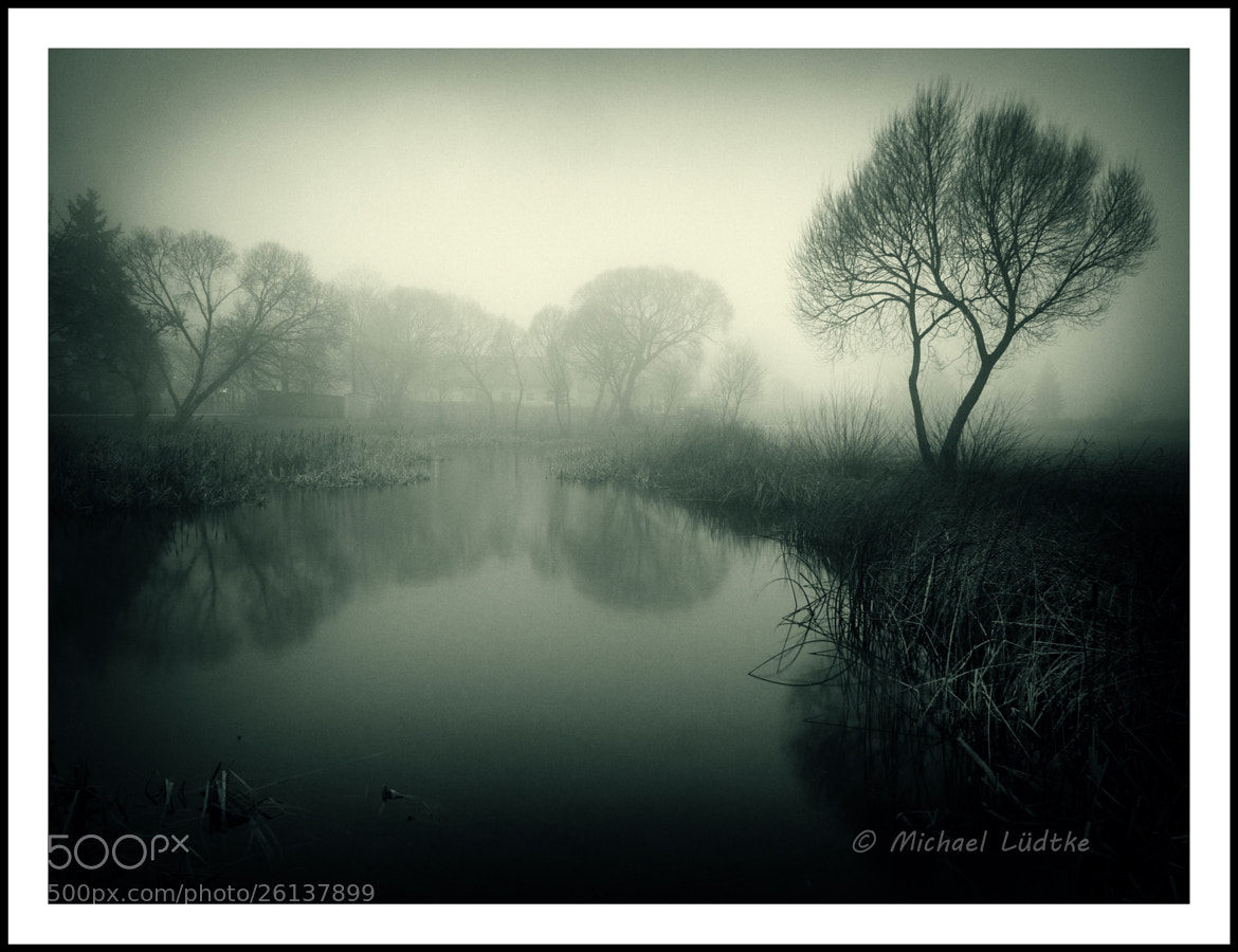 Photograph Foggy Afternoon by Michael Lüdtke on 500px