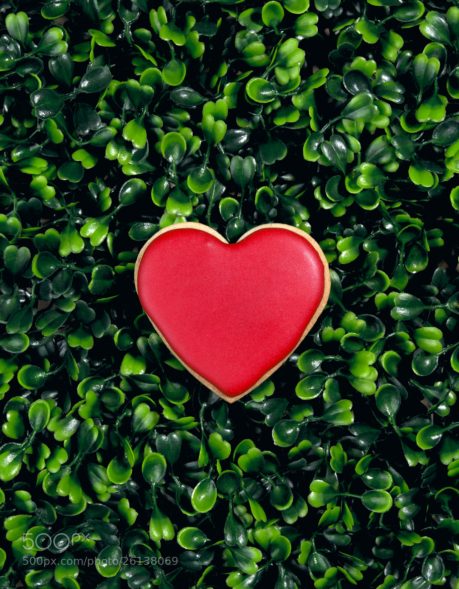 Photograph Heart Biscuit by Kerry Beckingsale on 500px