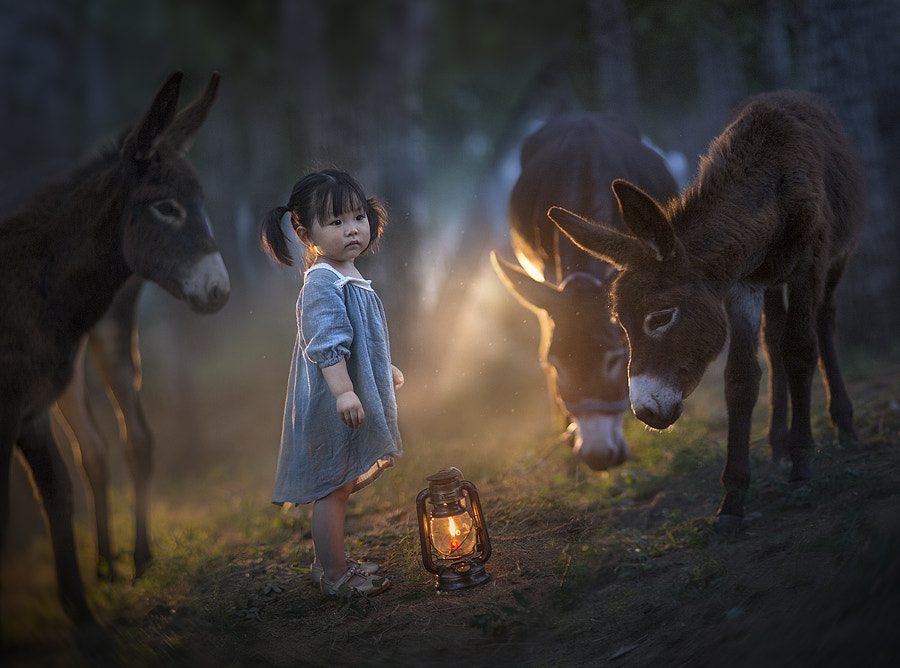 power of the light.. by Elena Shumilova on 500px.com