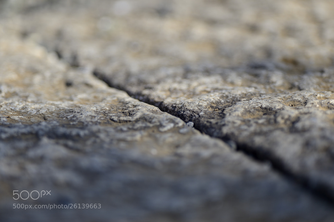 Photograph Depth of field. f/2.8 by Keith_TT on 500px