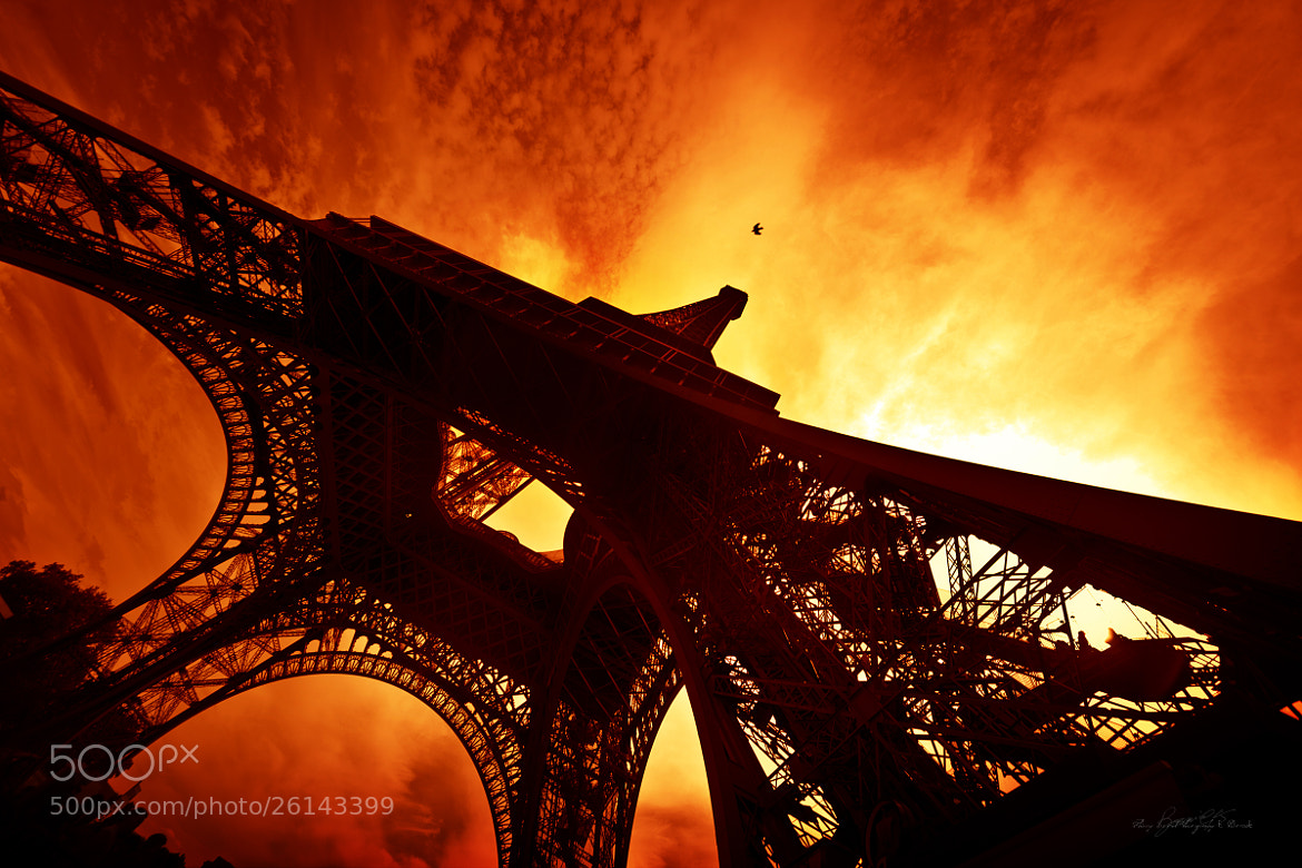 Photograph fly baby, fly ! by Thierry Gentil on 500px