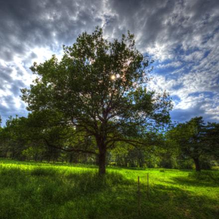 tonemapped, Nikon D4, AF-S Zoom-Nikkor 14-24mm f/2.8G ED