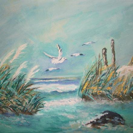 Seagulls, Fujifilm FinePix AV120