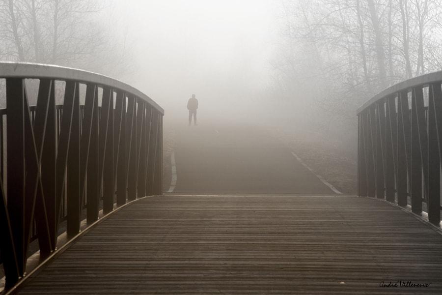 The fog after the bridge, автор — Andre Villeneuve на 500px.com