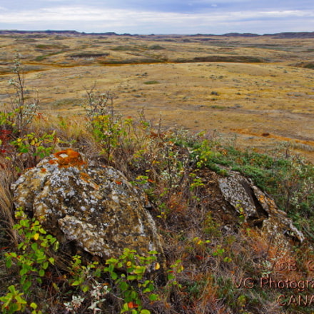 Grasslands National Park, RICOH PENTAX K-3, smc PENTAX-DA 15mm F4 ED AL Limited