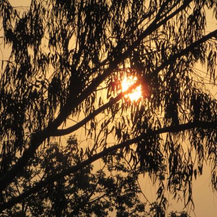 Sunset, Canon POWERSHOT SX400 IS