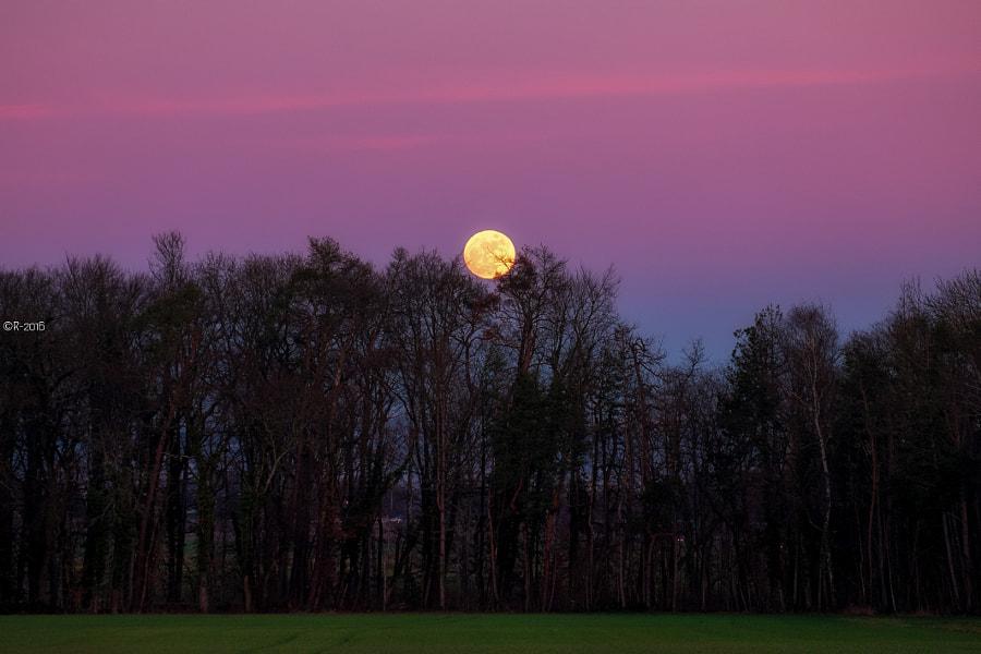 At The Twilight, автор — Olivier Rentsch на 500px.com