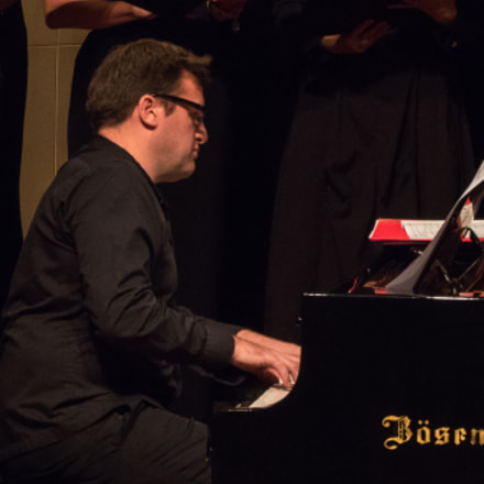 The Bösendorfer Pianist, Panasonic DMC-TZ70