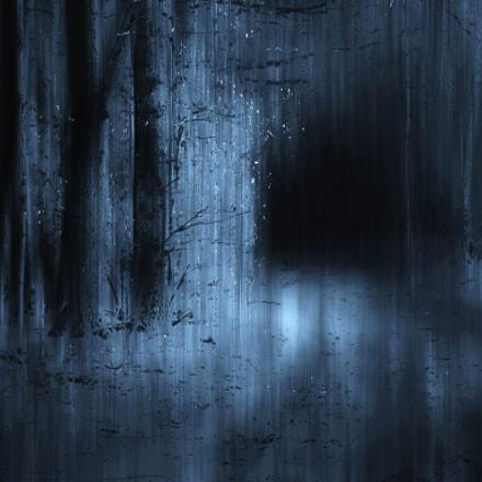 moonlight.., Sony DSC-H7