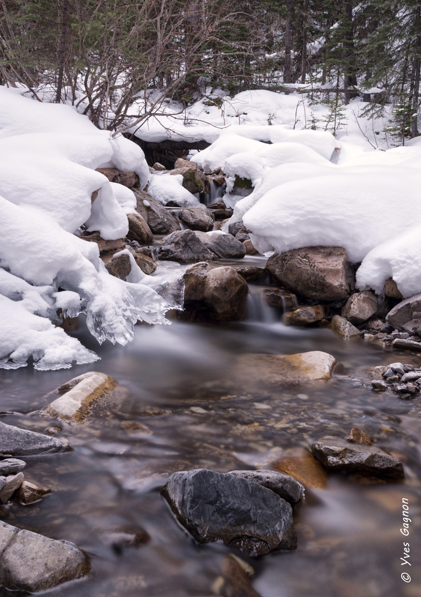 Photograph King Creek  by Yves Gagnon on 500px