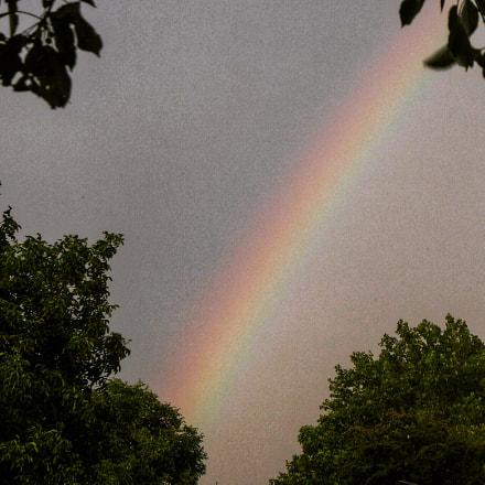 Rainbow, Panasonic DMC-TZ71