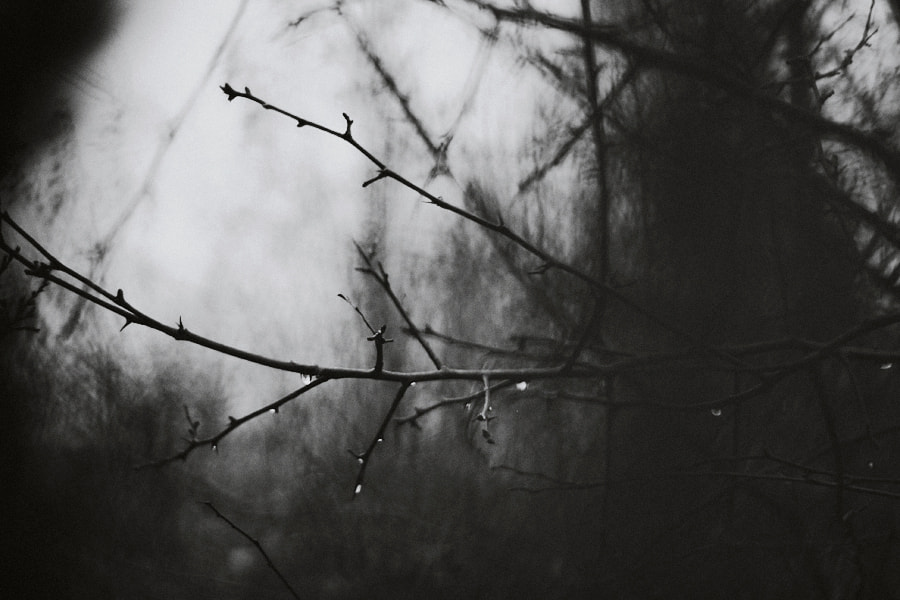 Photograph sad day by Magdalena S on 500px