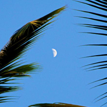 Tropical Moon, Sony DSC-W290