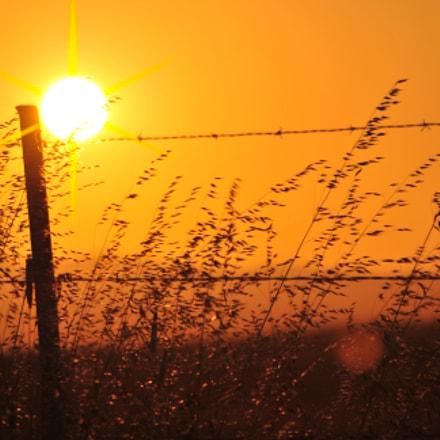 Setting sun at Rush, Nikon D3000, AF-S DX VR Zoom-Nikkor 55-200mm f/4-5.6G IF-ED