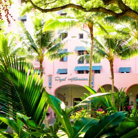 Pink Palace Study 4, Sony DSC-W290