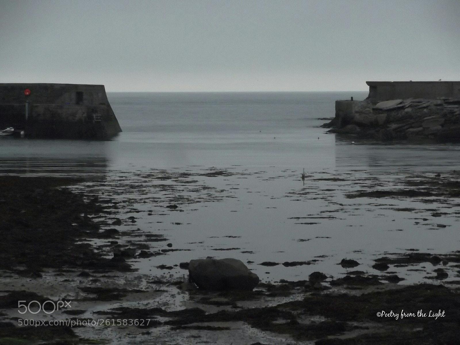 Silent Grey, Fujifilm FinePix T350