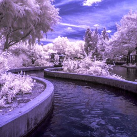 Infrared Waterway, Panasonic DMC-ZS50
