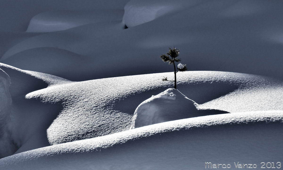 Photograph World of snow - Solo by Marco Vanzo on 500px