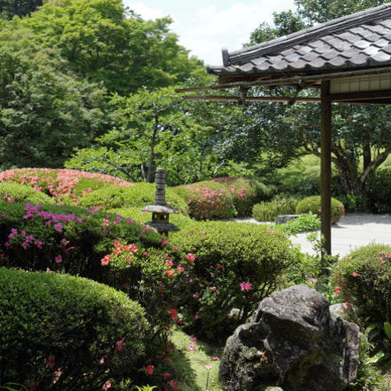 satsuki garden, Canon EOS KISS X7, Canon EF-S 18-55mm f/3.5-5.6 IS STM