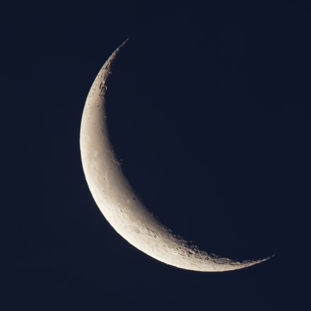 Moon 2018-06-10, Canon EOS REBEL T7I, Canon EF 100-400mm f/4.5-5.6L IS II USM