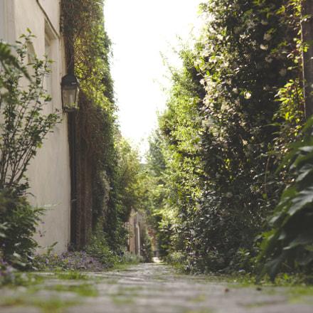 a hidden path, Canon EOS 700D, Canon EF-S 17-55mm f/2.8 IS USM