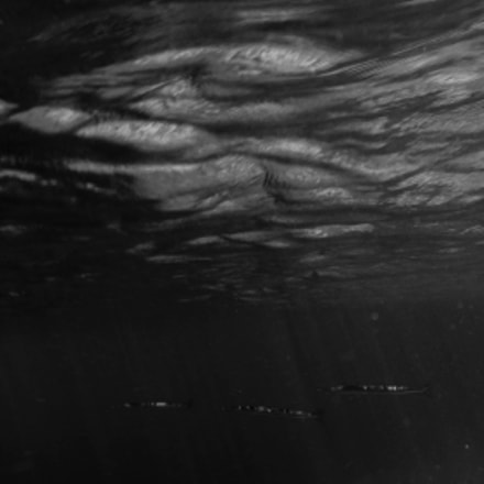 Underwater B/W, Canon POWERSHOT SX220 HS