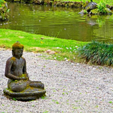 Byodo In Temple Grounds, Sony DSC-W290