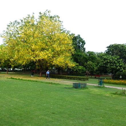 Garden of Fragrance, Chandigarh, Samsung Galaxy Ace