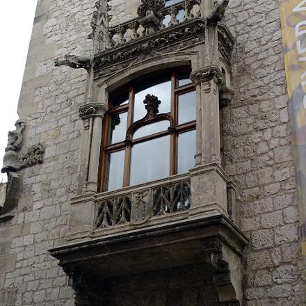 Burgos Casa del Cord, Sony DSC-P100