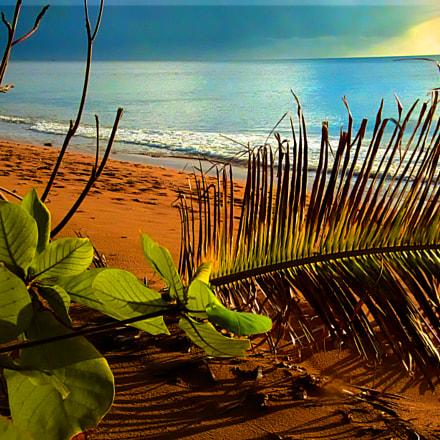 caribbean sunset, Fujifilm FinePix HS50EXR